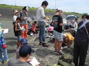 地層を観察する参加者