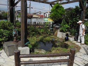 富水駅の自噴井