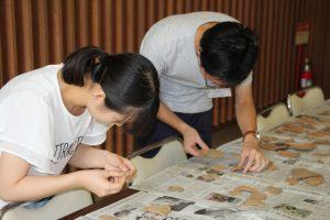 土器片の分類をする実習生