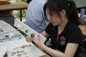 貝殻をパネルに固定する実習生