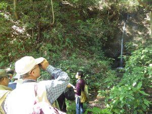 駒ヶ滝を観察する受講生と解説する野崎学芸員