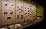 博物館文化祭の展示の様子
