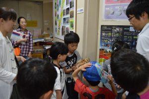 ナウマンゾウの化石を触る子どもたち