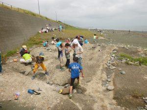 貝の化石を探し歩く参加者たち