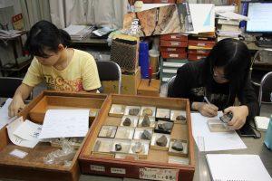 地質の資料整理実習の様子