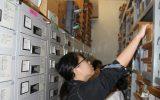 収蔵庫に資料をしまう実習生